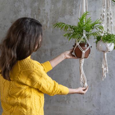 Make a macrame plant hanger.