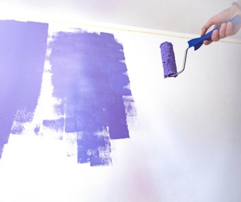 repaint walls