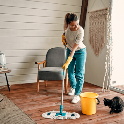 clean the house to prevent mold.