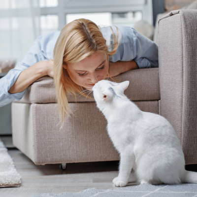 Having a Pet Improves Your Mood.